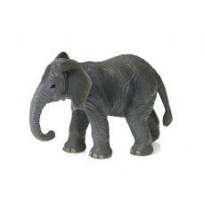 بچه فیل, image 2