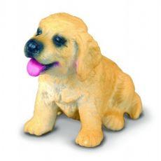 توله سگ شکاری طلایی, image 1