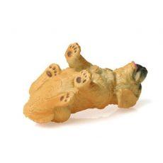 توله سگ شکاری طلایی, image 5