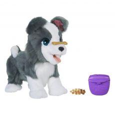 سگ رباتیک ریکی Furreal, image 9