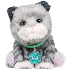 گربه رباتیک Smooch, image 2
