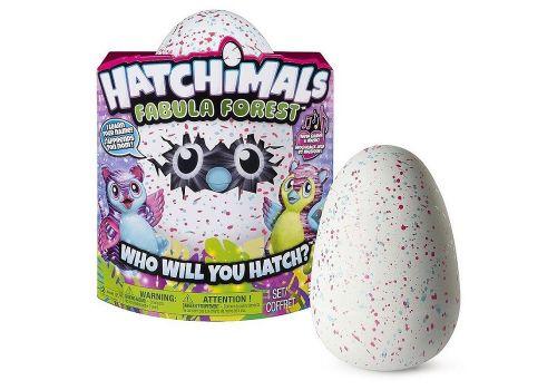 هچیمال فبیولا فارست تایگرت (یکی از دو رنگ بصورت اتفاقی داخل تخم است), image 1